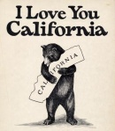 Bear_California