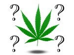 weedquestion